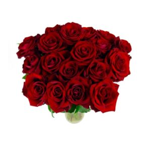 18 Select Red Roses
