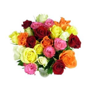 24 Classic Mixed Roses