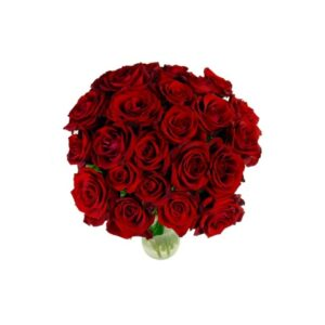24 Select Red Roses